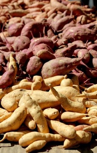 Foto Manfaat ubi jalar bagi kesehatan