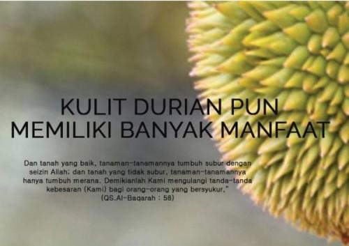 cover Manfaat dari kulit Durian