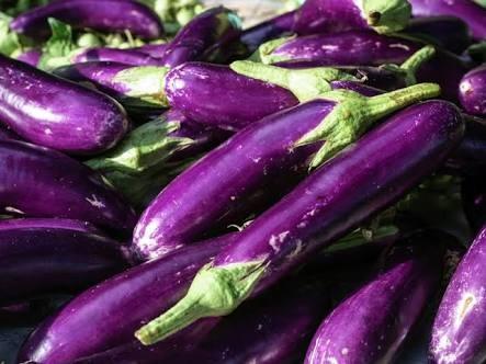 Foto manfaat terong ungu