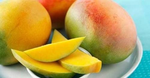 cover manfaat buah mangga