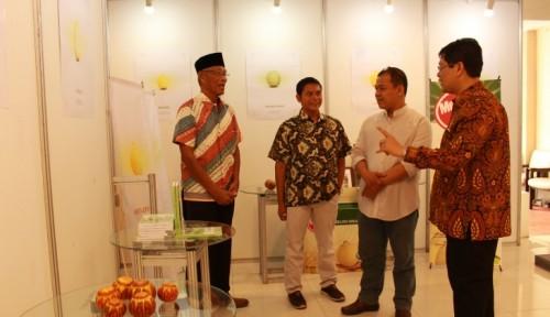 cover Fakultas Biologi UGM Meluncurkan Melon Kultivar Hikapel