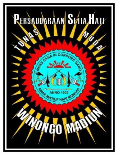 Foto SEJARAH DAN ARTI LAMBANG SH WINONGO