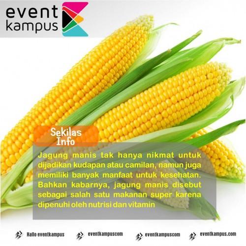 Foto Manfaat jagung manis untuk kesehatan