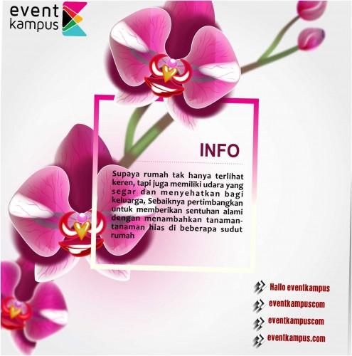 cover Daftar tanaman hias paling pas untuk rumah Indonesia