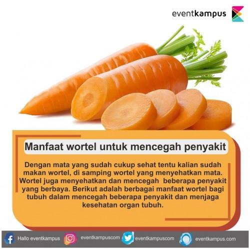 cover Manfaat wortel untuk mencegah penyakit