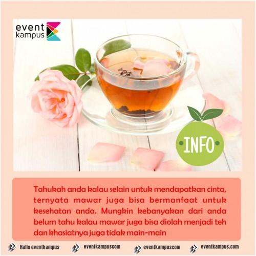 cover Khasiat teh mawar untuk kesehatan