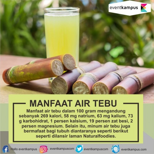 cover MANFAAT AIR TEBU