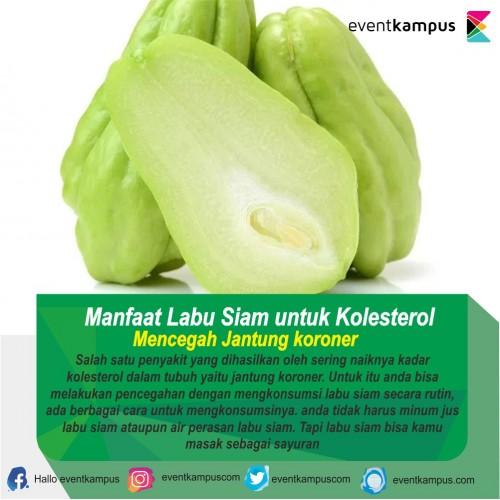 cover Manfaat Labu Siam untuk Kolesterol
