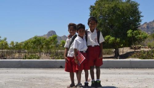 cover Kampus Perlu Mengajarkan Pendidikan untuk Pembangunan Berkelanjutan