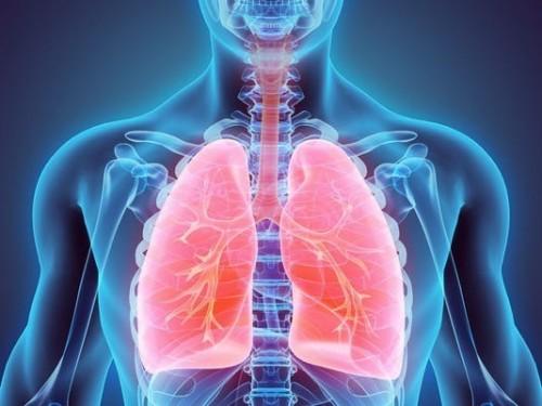 cover Mengenal Pneumonia atau Paru-paru basah