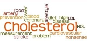 cover Penyebab Kolesterol Tinggi Pada Usia Muda